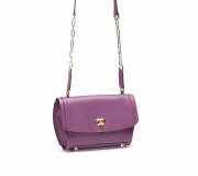 Сумка ELEGANZZA Z-05-108-3 purple